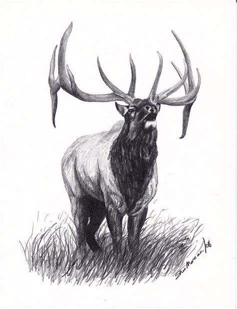 bull elk tattoo designs elk bull elk limited edition print black by