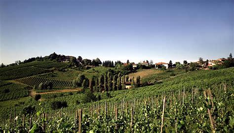 vini pavia oltrepo pavese terra di grandi spumanti e grandi vini