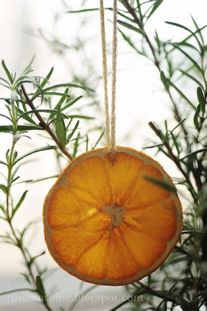 Tree Decorations Orange by A Fruitful Trees Tree