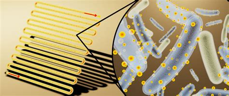 3d Origami Cyborg living artificial leaves solar panel covered cyborg bacteria to generate the renewable fuels