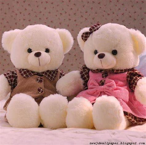 wallpaper of couple teddy bear teddy bears wallpapers 171 new 3d wallpaper