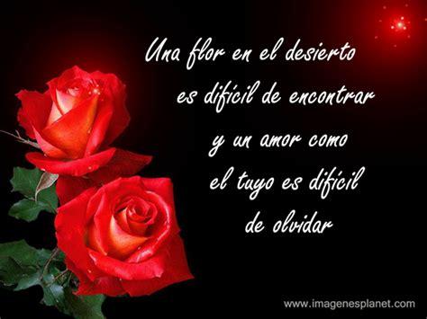 imagenes flores y frases imagenes de lindas rosas con frases romanticas de amor
