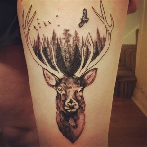 stag tattoo stag on