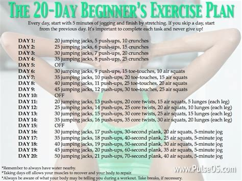 work out plan for beginners at home fitness workout plan for beginners workout pinterest