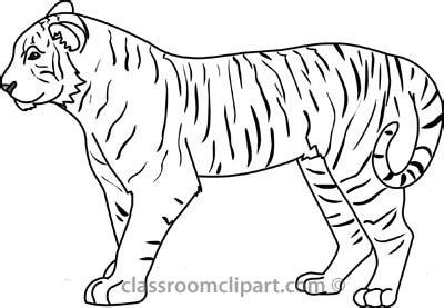 Tiger Outline Images by Tiger Outline Clipart