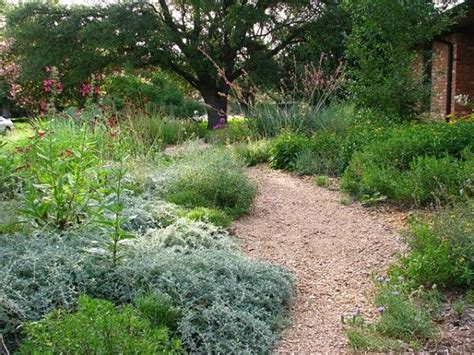 Texas Native Landscaping Front Yard Prairie Planting In