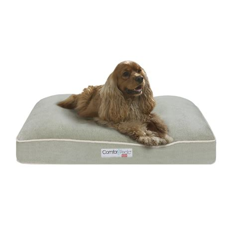 Comforpedic Pillow By Simmons by Simmons Comforpedic Silver Green 20x30x4 Quot Memory Foam