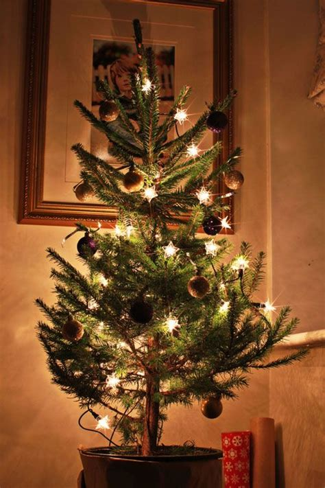 desktop twinkling tree decoration how to photograph your tree how to get twinkle bursts of light magic