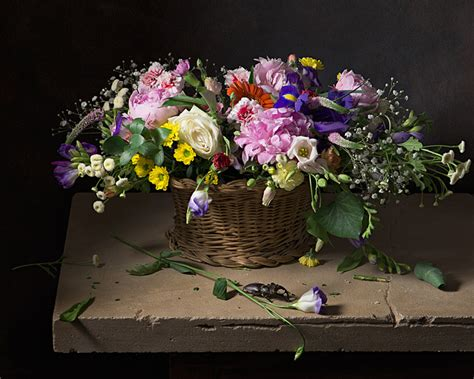 Still Still Still In Nature Morte - nature morte site dedicated to the photographic