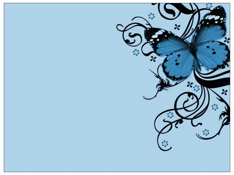 design background butterfly blue butterfly wallpapers wallpaper cave
