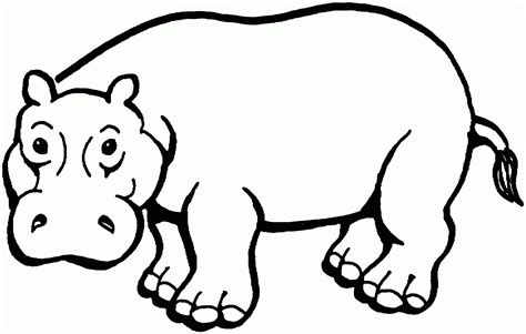 hippo coloring page printable hippo coloring page printable coloring image