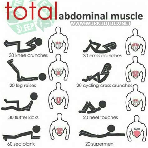 total abdominal sixpack workout plan abs power yeah we abs