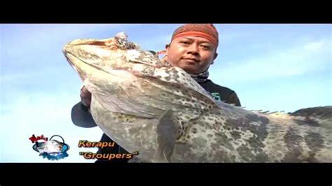 ekspedisi berdikari laut dalam mata pancing 12
