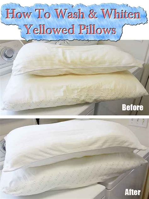 How To Get Yellow Stains Out Of Pillows by How To Wash Whiten Yellowed Pillows Livinggreenandfrugally Tips Pillows