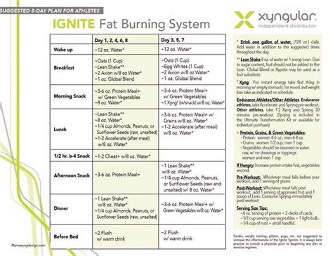 8 day challenge diet the ignite burning system health weight loss