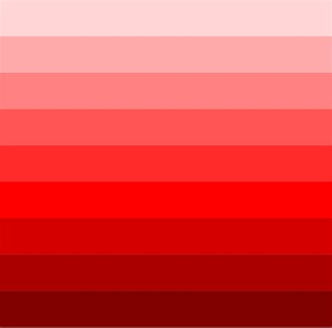 monochrome color monochromatic color color wheel garden planning