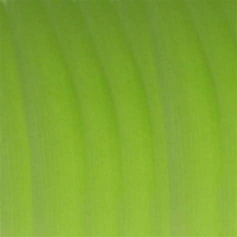 printable paper green printable green leaf images