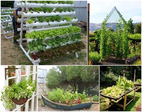 amazing vegetable gardens amazing interior design new post has been published on