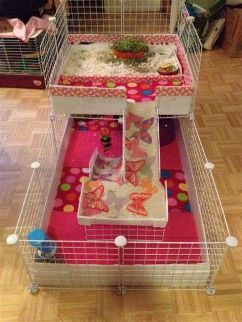 guinea pig bedding ideas discussion forum for guinea pig cages cavy cages care
