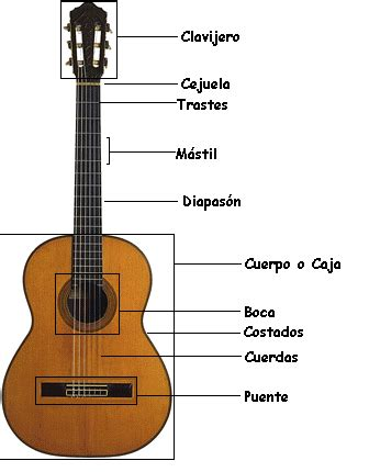 imagenes instrumento musical requinto guitarra net partes de la guitarra