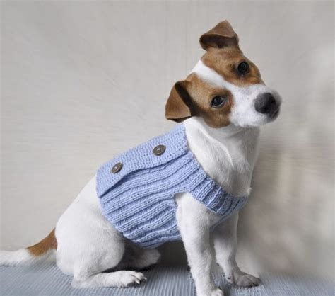 Strickanleitung Hundepullover Chihuahua die besten 25 hundepullover h 228 keln ideen auf