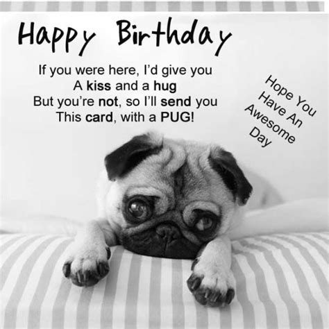 happy birthday pug card happy birthday card pug graphic