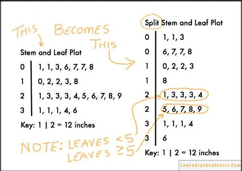 how to make a stem and leaf diagram 1000 images about math tek 6 12a stem and leaf plots on