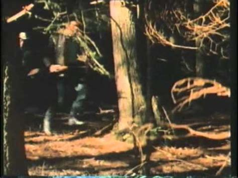 watch grizzly 1976 movie grizzly l orso che uccide film completo youtube