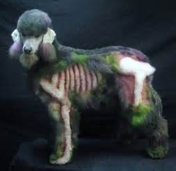 zombie poodle boing boing