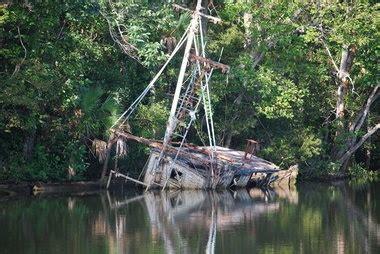 apalachicola river boat tours 35 best da island st george island fl images on