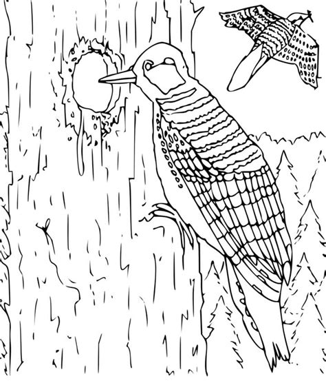 coloring pages of cute animals hard hard animal coloring pages coloring home