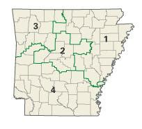 politics and government of arkansas