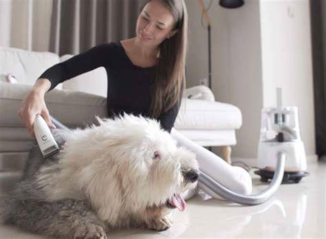 Portable Electric Pet Fur Suction Device Pembersih Bulu Peliharaan groompal vacuum powered 3 in 1 pet care tool gadgetsin