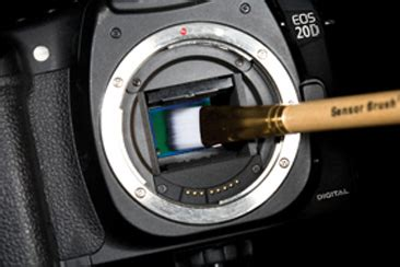 sensor cleaning how to guide by canon canonwatch