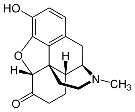 Hydrocodone Sysnthesis by Hydromorphone