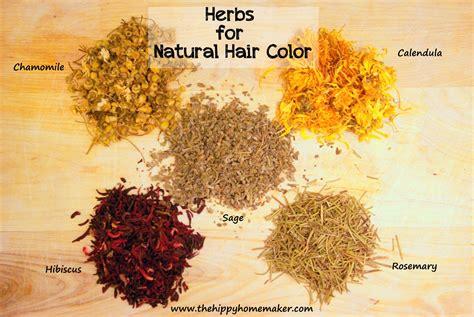 herbal hair color herbal hair color for healthy hair hippy