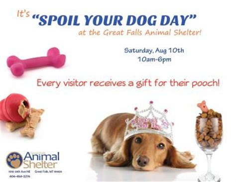 national spoil your day spoil your day city of great falls montana