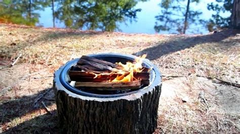 build pit around tree stump plow and hearth pit pit ideas