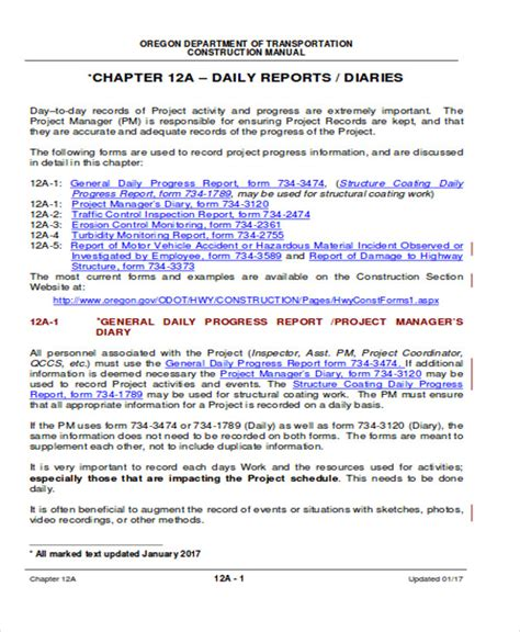 daily accomplishment report template 41 report format sles