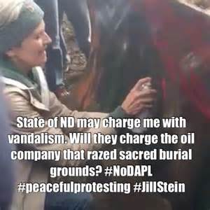 Pipeline Memes - jill stein s arrest warrant all the memes you need to see