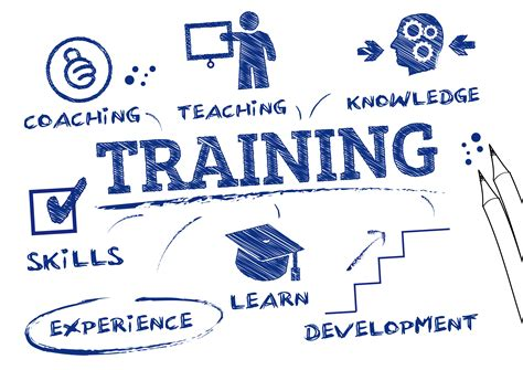 trainers workshop the hr suite hr consultants and business solutions ireland