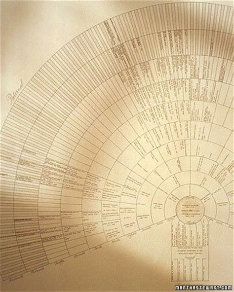 pretty family tree template 1000 ideas about family tree chart on