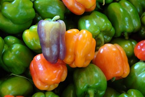 what s a good bell pepper substitute pepperscale