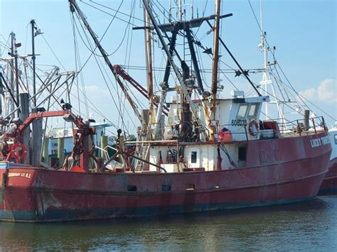 boats for sale on long beach island nj commercial fishing boat picture of viking village