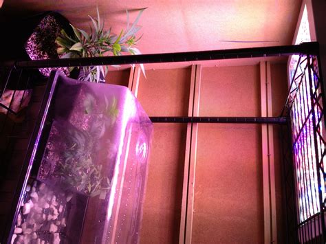 indoor garden setup i setup your indoor garden and teach you how to use it