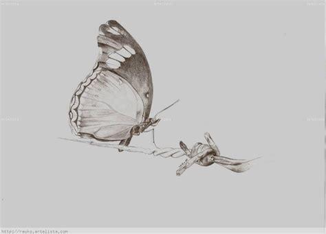 imagenes de mariposas a lapiz dibujos a lapiz mariposa imagui