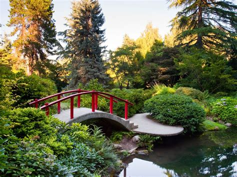 breathtaking seattle area botanical gardens curbed