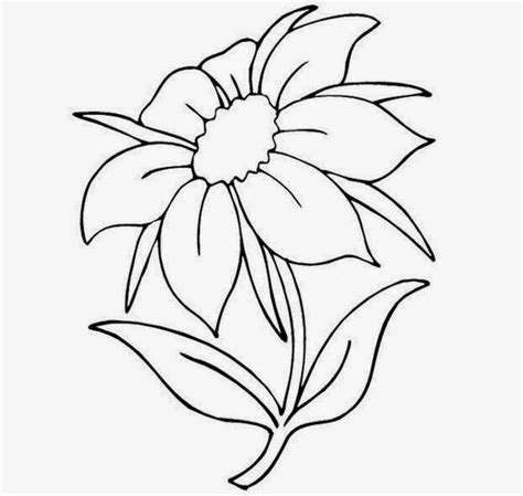 Drawing Flowers by Pictures Of Flowers To Draw Beautiful Flowers
