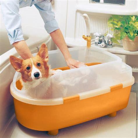 when can puppies get a bath iris bath tub medium on sale free uk delivery