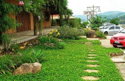 jardim decorado pedras e grama tipos de grama 11 esp 233 cies como e onde usar